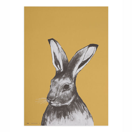 Poster 50x70cm Hare