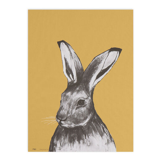 Poster 30x40cm Hare