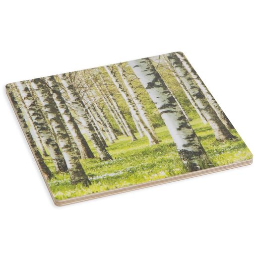 Trivet Birch forest, green