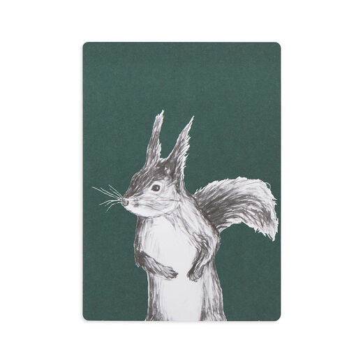 Postcard Squirrel