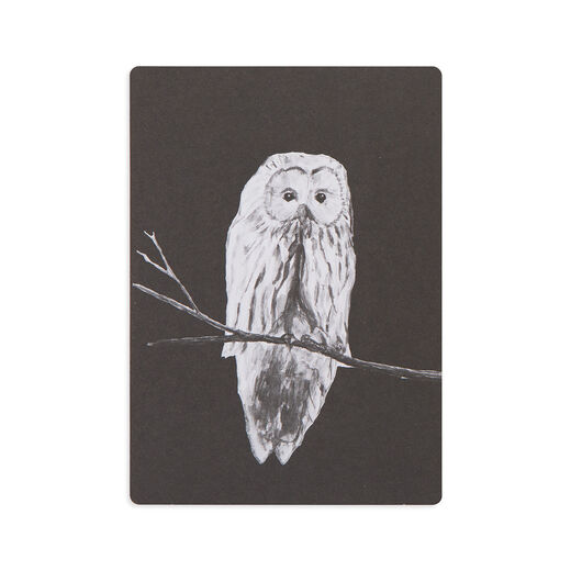Postcard Owl, black